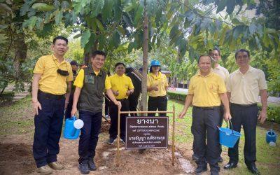 วันที่ 21 ตุลาคม 2563 ส่วนจัดการต้นน้ำ สบอ.9 เข้าร่วมกิจกรรมวันรักต้นไม้ประจำปีของชาติ ประจำปี 2563 โดยได้บำรุงดูแลต้นไม้ ภายในบริเวณพื้นที่สำนักบริหารพื้นที่อนุรักษ์ที่ 9 (อุบลราชธานี)